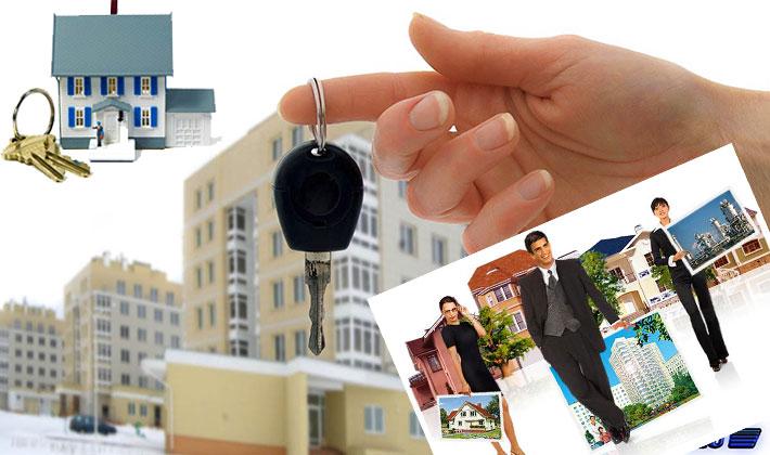 Размер агентства недвижимости