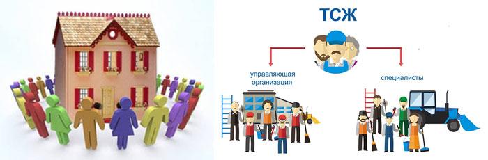ТСЖ и схема замены УК