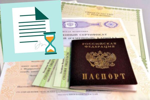 Паспорт РФ и документы
