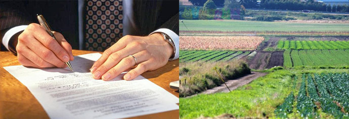 Подписание договра и земельные участки