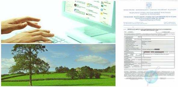 Кадастровая выписка образец, подача заявления через интернет