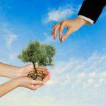 Как получить субсидию по ипотеке? Стратегии