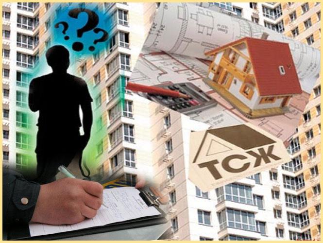Человек, дома, документы и ТСЖ