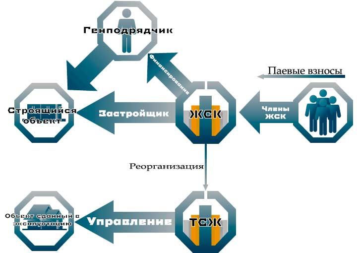 ЖСК структура