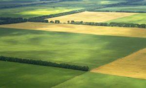 договор субаренды земельного участка +для строительства